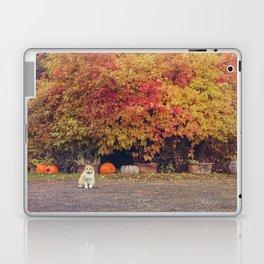 Autumn Cat Laptop & iPad Skin