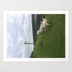 Guidepost amongst sheep Art Print