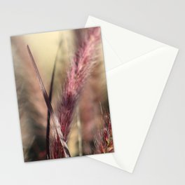 Pink Cat Tail Stationery Cards