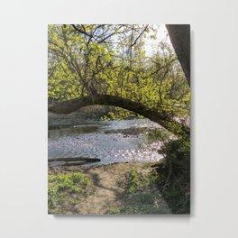 Creekside Metal Print