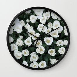 A field of white tulips in full bloom. Floral art. Keukenhof. Perspective: above. Nature photography Wall Clock