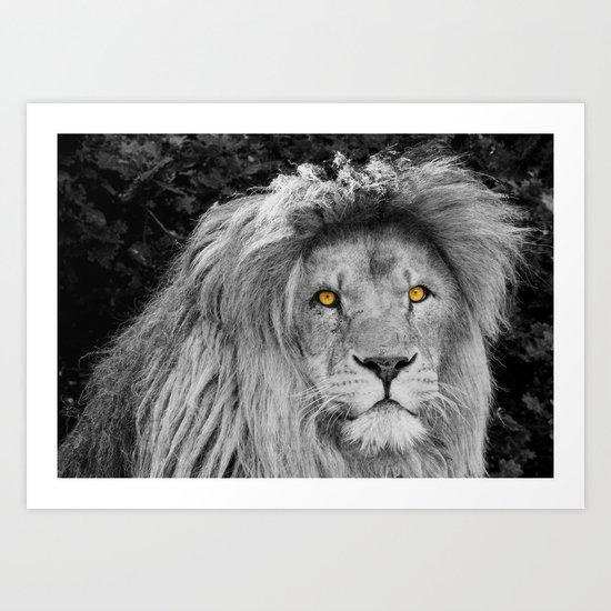 LION BEAUTY Art Print