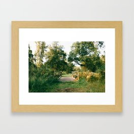Holme Woods 2 Framed Art Print