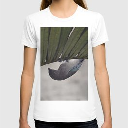 Tightrope Walker Bird T-shirt