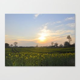 Blooming in yellow ## Canvas Print