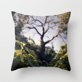 Old Tree, Color Film Photo Throw Pillow