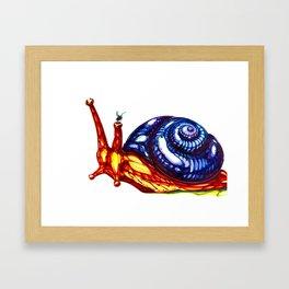 Flies... Framed Art Print