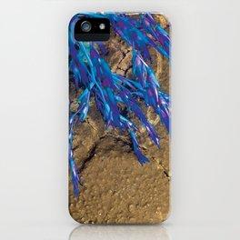 I Turned Blue iPhone Case