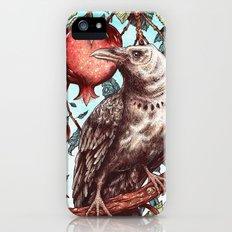 Havest Season iPhone SE Slim Case