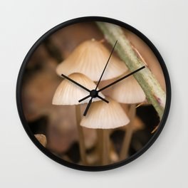 Little mushooms #5 Wall Clock