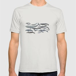 Whale diversity T-shirt