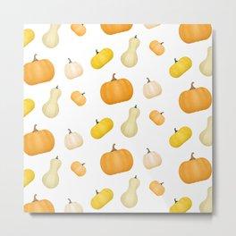 Pumpkins & Squash Pattern Metal Print