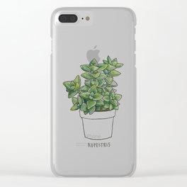RUPESTRIS - SUCCULENT Clear iPhone Case