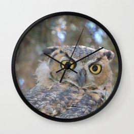 Young Owl at Noon Wall Clock