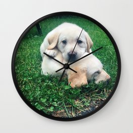 Puppy Fever Wall Clock