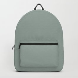 Allaying Grey Blue Green Solid Color Pairs To Sherwin Williams Halcyon Green SW 6213 Backpack