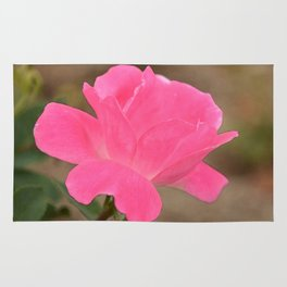 The Fairest of Roses Rug