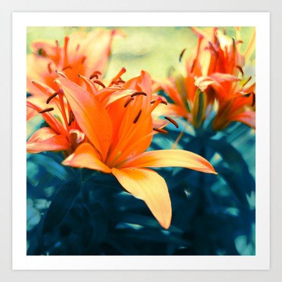 Summer Lilies I Art Print