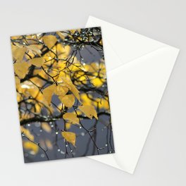 Golden Birch Leaves in the Fall Stationery Cards