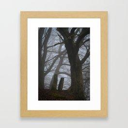 Misty Path Framed Art Print
