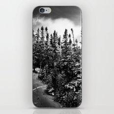 Alpine iPhone & iPod Skin