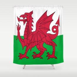 Flag of Wales,uk,great britain,dragon,cymru, welsh,celtic,cymry,cardiff,new port Shower Curtain