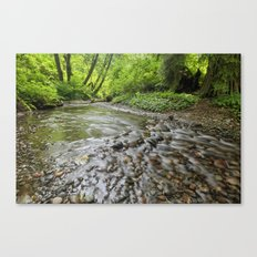 Spawning Grounds Canvas Print
