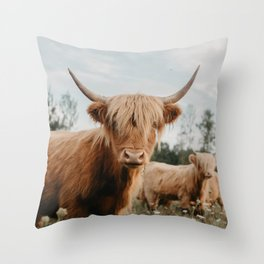 Pillows By Chelsea Victoria Society6