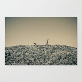 Remains of war Canvas Print