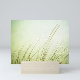 Beach Grass Photography, Calming Coastal Green Art, Zen Photo, Seashore Seaside Art Mini Art Print