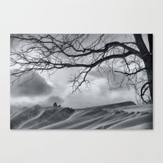 Chilling Wind Drifting Snow  2009 Canvas Print