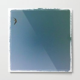 Lone Pelican Metal Print