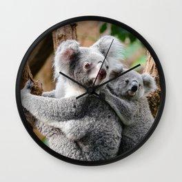 Koala Wall Clock