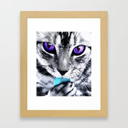 Purple eyes Cat Framed Art Print