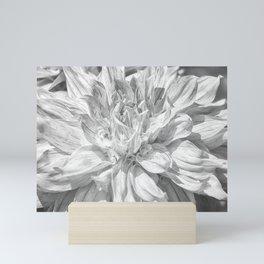 Marbled Dahlia, No. 1 bw Mini Art Print