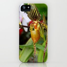A Slipper in the Shadows iPhone Case
