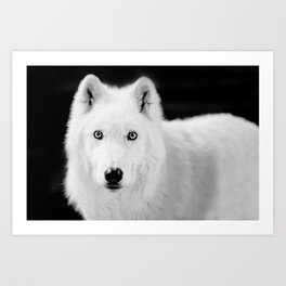 save the wolf Art Print