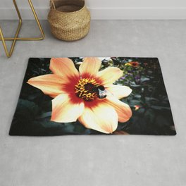 Translucent Wings Rug