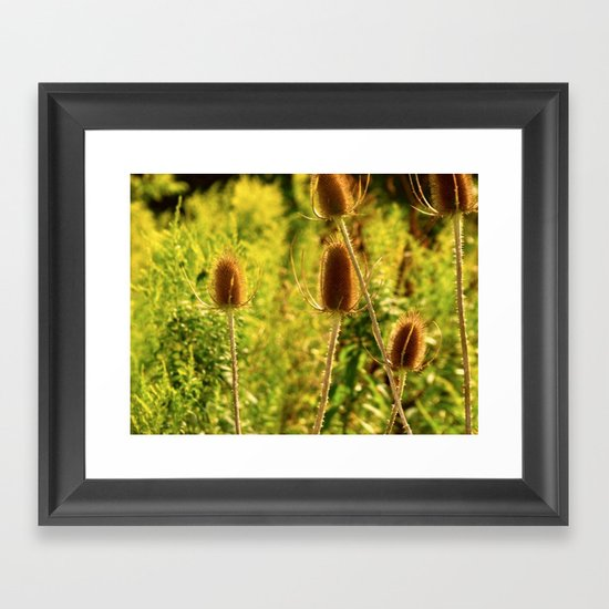Country Side Framed Art Print