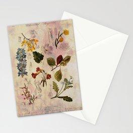 Botanical Study #1, Vintage Botanical Illustration Collage Stationery Cards