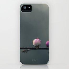 makro_baum_1 iPhone Case