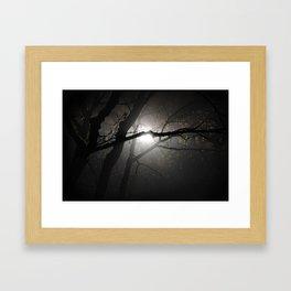 Tree in the fog at night Framed Art Print