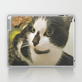 The cat Laika Laptop & iPad Skin