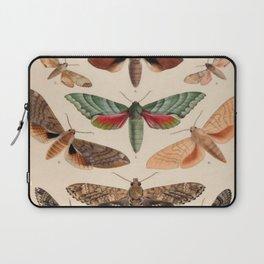 Vintage Natural History Moths Laptop Sleeve