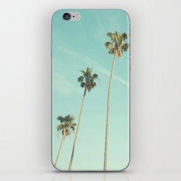 Palm Trees 2 iPhone Skin