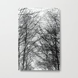 Tree Silhouette Series 8 Metal Print