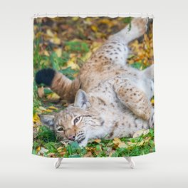 Playful Lynx Shower Curtain