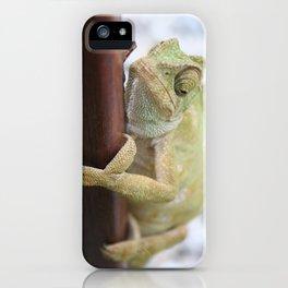 I'm A Bit Of A Chameleon iPhone Case