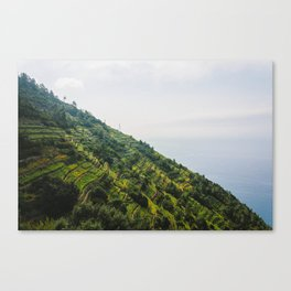 Wine mountains Canvas Print