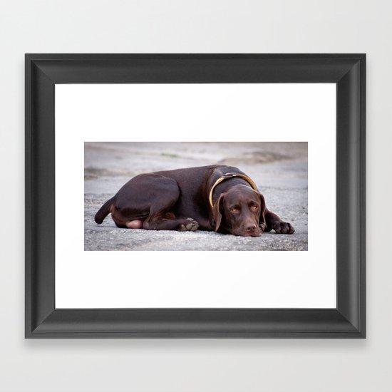 the hound dog Framed Art Print